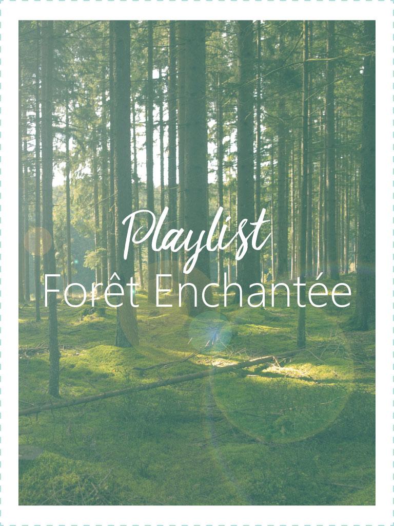 Playlist Forêt Enchantée - tiDudi
